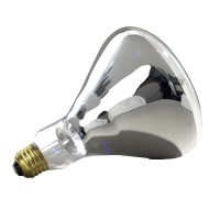 Specialty Bulbs